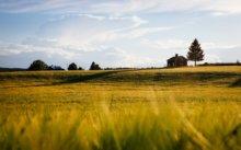 Comment mettre en valeur un bien immobilier en zone rurale ?